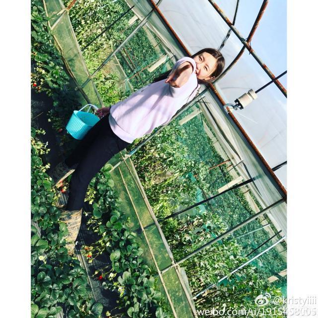 刘湘3.jpg
